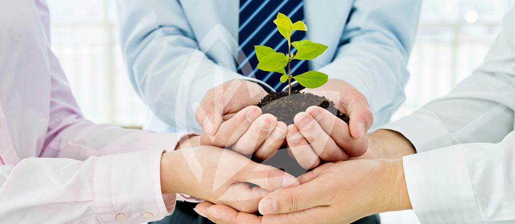Einstieg_Umweltpolitik